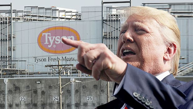 Trump orders to resume production of 'supply chain crisis' meat processing companies.